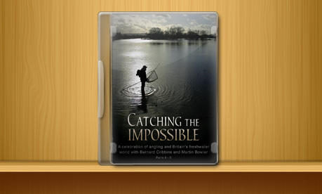 Catching The Impossible - Part 2